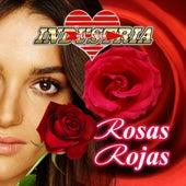 Rosas Rojas de Industria Del Amor