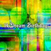 14 Dream Birthday de Happy Birthday