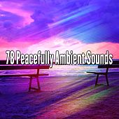 78 Peacefully Ambient Sounds von Entspannungsmusik