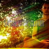 54 Sanctity In Solitude von Entspannungsmusik