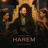 Harem by Edward Maya