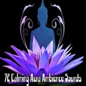 72 Calming Aura Ambience Sounds de Musica Relajante