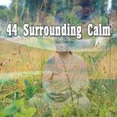 44 Surrounding Calm de Meditación Música Ambiente