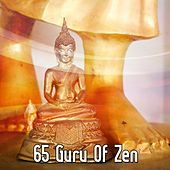 65 Guru Of Zen de Nature Sounds Artists