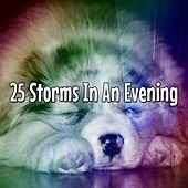 25 Storms In An Evening de Thunderstorm Sleep