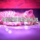 75 Cultivate Peace At The Spa de Water Sound Natural White Noise