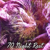 70 Night Rest by Lullaby Land