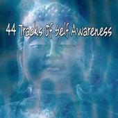 44 Tracks Of Self Awareness von Massage Therapy Music