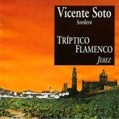Tríptico Flamenco: Jerez di Vicente Soto Sordera