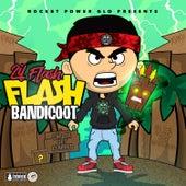 Flash Bandicoot by Lil Flash