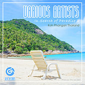 In Search Of Paradise 2 [Phangan] - EP by Various Artists