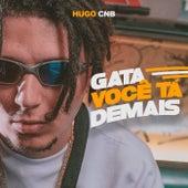 Gata Você Tá Demais by Hugo CNB
