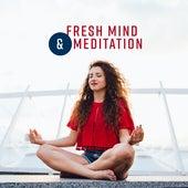Fresh Mind & Meditation de Zen Meditation and Natural White Noise and New Age Deep Massage