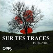 Sur tes traces by Opal