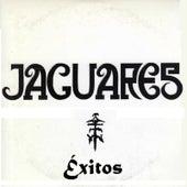 Éxitos by Jaguares
