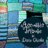Acoustic Tribute to Dixie Chicks de Guitar Tribute Players