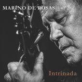 Intrinada by Marino de Rosas