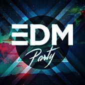 EDM Party van Various Artists