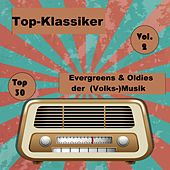 Top 30: Top-Klassiker, Evergreens & Oldies der (Volks-)Musik, Vol. 2 van Various Artists