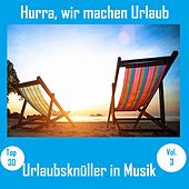 Top 30: Hurra, wir machen Urlaub - Urlaubsknüller in Musik, Vol. 3 van Various Artists