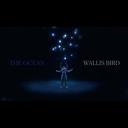 The Ocean de Wallis Bird