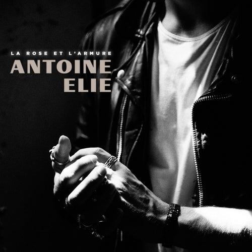 La rose et l'armure (Radio Edit) de Antoine Elie