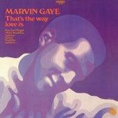 That's The Way Love Is de Marvin Gaye