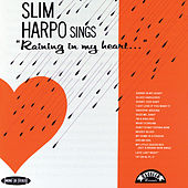 Sings Raining In My Heart de Slim Harpo