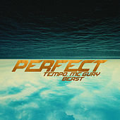 Perfect by Tempo