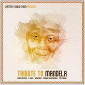 Tribute to Madiba by Piero Battery
