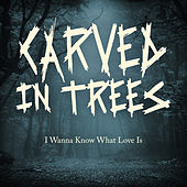 I Wanna Know What Love Is de Carved In Trees