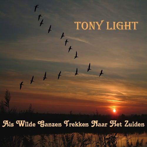 Als Wilde Ganzen Trekken Naar Het Zuiden van Tony Light