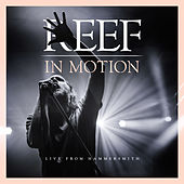 In Motion (Live from Hammersmith) by Reef