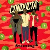 Steezing de Conducta