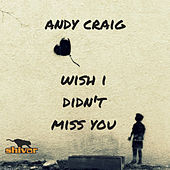 Wish I Didn't Miss You by Andy Craig
