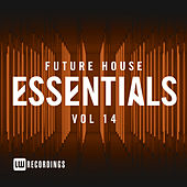 Future House Essentials, Vol. 14 - EP de Various Artists