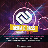 Drum & Bass Anthology: 2019 - EP by Various Artists