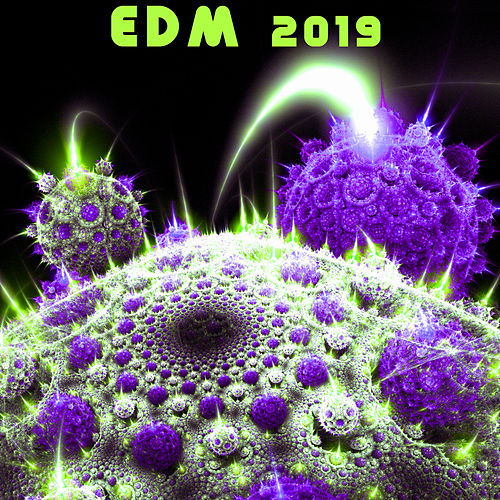 Edm 2019 de Various