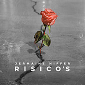 Risico's by Jermaine Niffer
