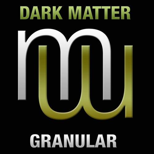 Granular (Radio Edit) by Dark Matter