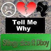 Tell me why by Stingy Dice