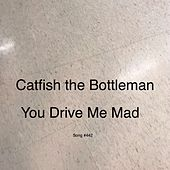 You Drive Me Mad by Catfish and the Bottlemen
