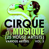 Cirque du Musique, Vol. 3  (25 House Artists) - EP by Various Artists