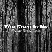 Never Grow Cold by The Cure Is Us