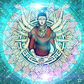 Supreme Paradigm: The Grand Scheme von Wisecrvcker