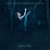 Seni Senin Gibiler Sevsin by Ceylan Ertem