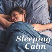 Sleeping Calm de Various Artists