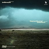 Elephant Shunned (Solee Remix) von Jan Blomqvist