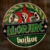 Lloraré von Boikot
