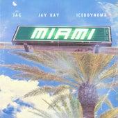 Miami de Jay Kay (1)